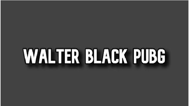 Walter Black Apk for PUBG (100% Working)